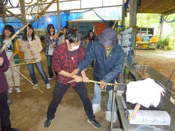 サトウキビ刈り&黒糖作り体験♪宜野座村【夢の扉楽園王国】